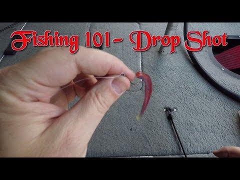 Bass Fishing 101- Drop Shot