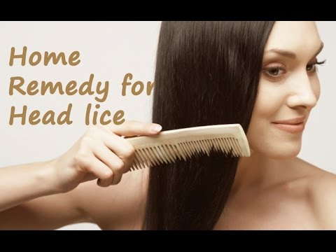 How to remove Head lice   Home remedy for Head Lice