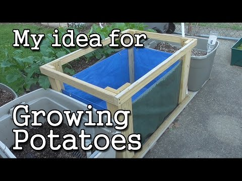 Growing Potatoes  in a Potato-Grow BOX - Urban Garden Style!