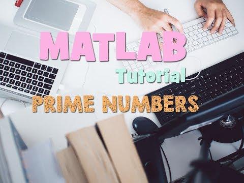 FIND PRIME NUMBERS MATLAB CODING (EASY STEPS)