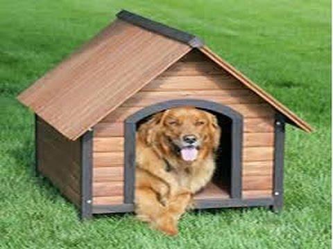 Minecraft: how to make a dog house
