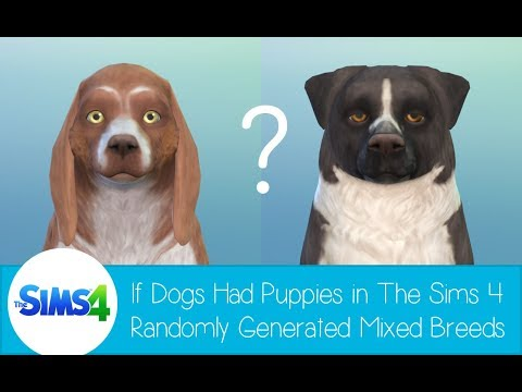 If Dogs Had Puppies in The Sims 4 - Randomly Generated Mixed Breeds