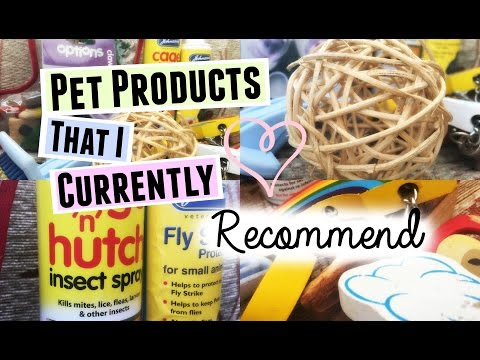 Pet Products That I Currently RECOMMEND | RosieBunneh