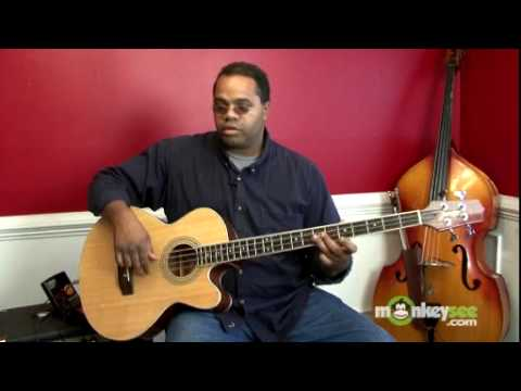 How to Choose a Bass - Acoustic Bass