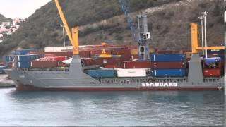Sea Monster attacking cargo ship