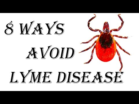 8 Ways to Avoid Catching Lyme Disease - How to Prevent Lyme Disease