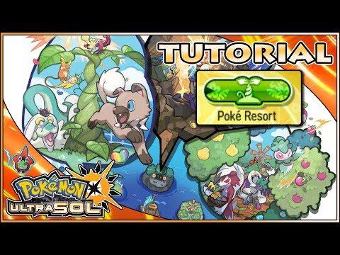 ♦️ Guía Pokémon UltraSol ♦️ #44 ▪️ Tutorial del Poké Resort ▪️ Bayas , Tesoros , EXP y EVs...
