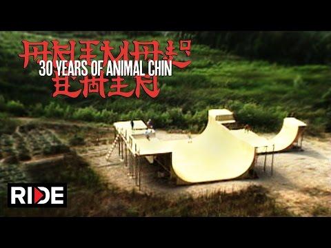 Animal Chin 30 Years  - Building The Chin Ramp 1/4