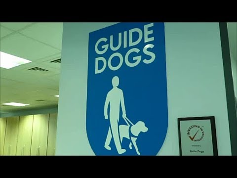 The Guide Dogs National Breeding Centre