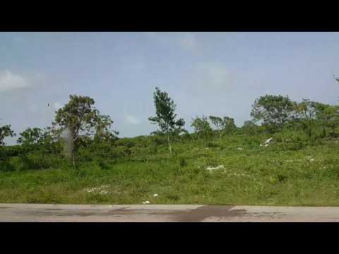 Driving from airport in Punta Cana