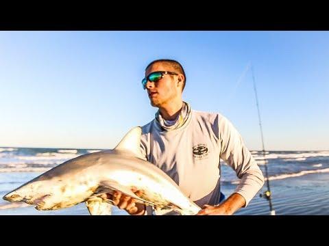 shark fishing padre island national seashore w/ ThresherFishing