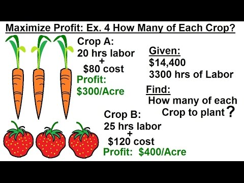 Business Math - Linear Programming - General Sol : Optimization (6 of 6) Max. Profit: Growing Crops