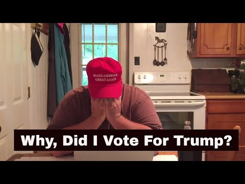 Why, Did I Vote For Trump?