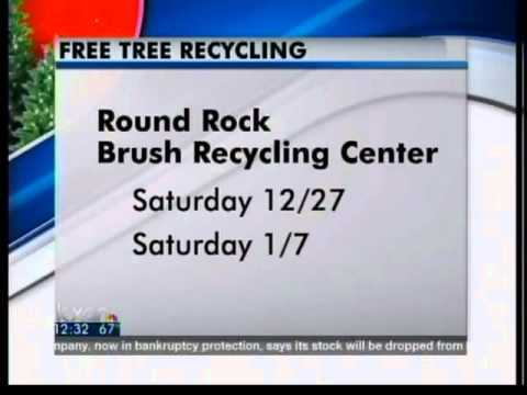 Christmas tree recycling starts