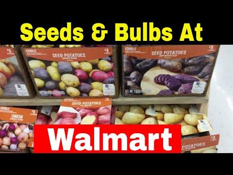 Seeds and Bulbs at Walmart