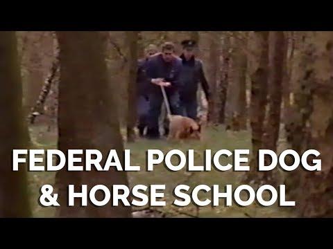 Nunspeet Federal Police Horse & Dog School
