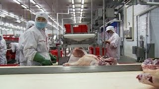 Who's behind the Chinese takeover of a U.S. pork producer?