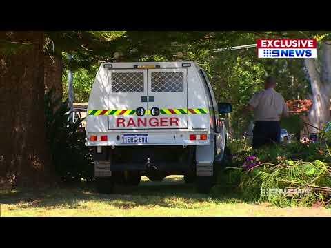Woman Mauled | 9 News Perth