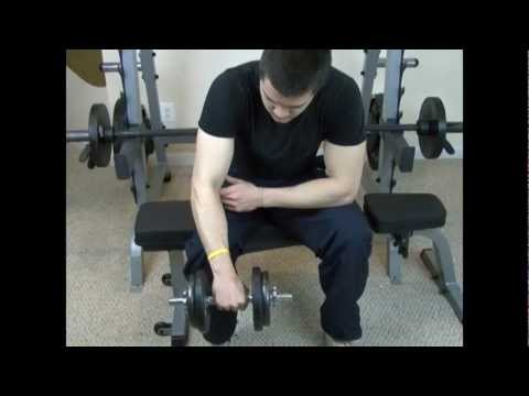 Best Forearm Workouts | Palms Down Wrist Curls