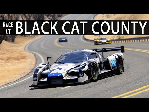 BLACK CAT COUNTY RACE w FANATEC WHEEL + PEDALS   ASSETTO CORSA