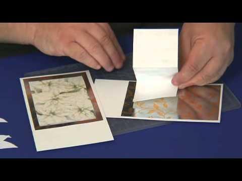 White Poinsettia Craft Download Show.wmv