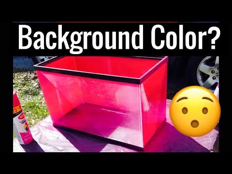 Best Color to Paint Aquarium Background?