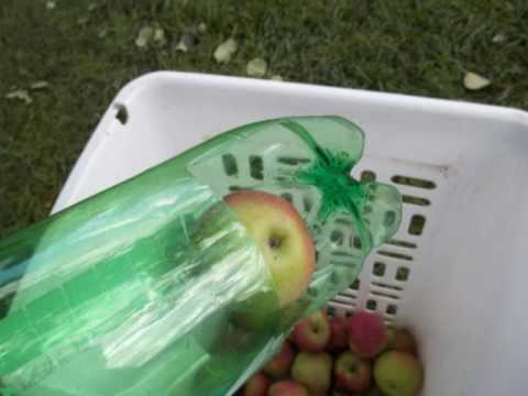Making a Fruit Picker Out of a Soda Bottle
