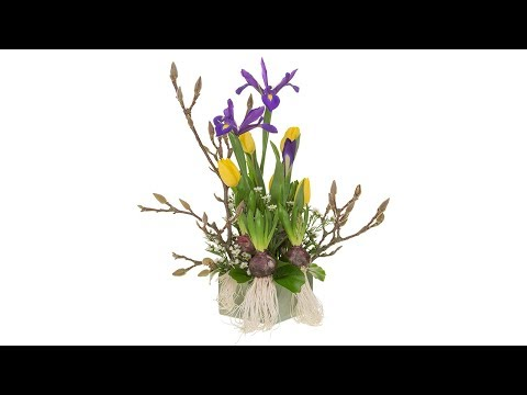 Spring Botanical Floral Design
