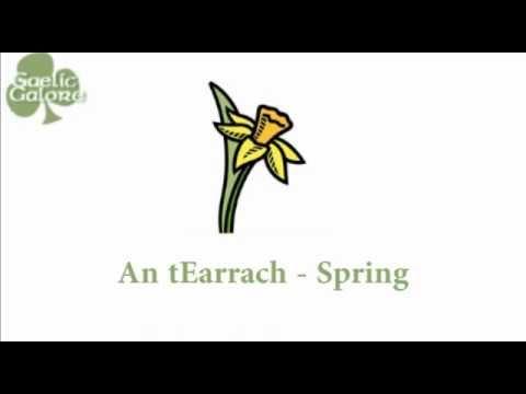 Learn Irish - Gaelic Galore Lesson 16 - Times of Year