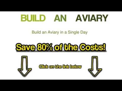 How To Build A Bird Aviary Plans