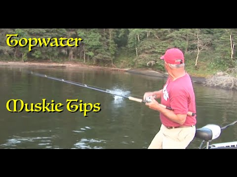 Topwater Musky Tips