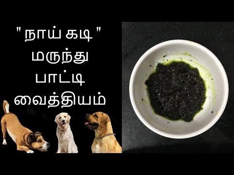நாய் கடி மருந்து - Tamil health tips