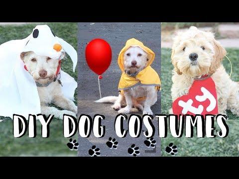 DIY Halloween Dog Costumes   Zero, IT Georgie, TY Beanie Babies 👻🎈🐶