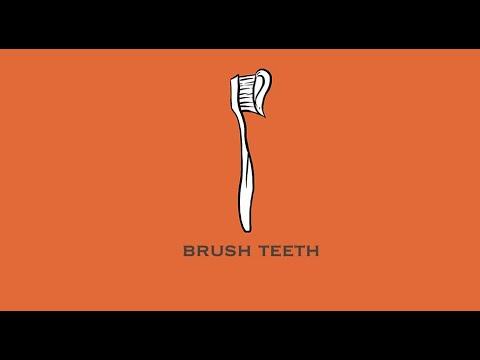 How to Brush a Yorkie's teeth: Brushing Orius' teeth
