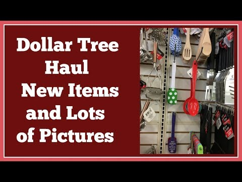 New Items Dollar Tree Haul🤑 with Lots of Pictures