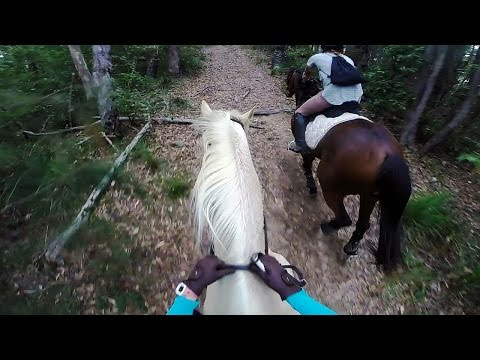 Come for a trail ride with me | 02/09/15