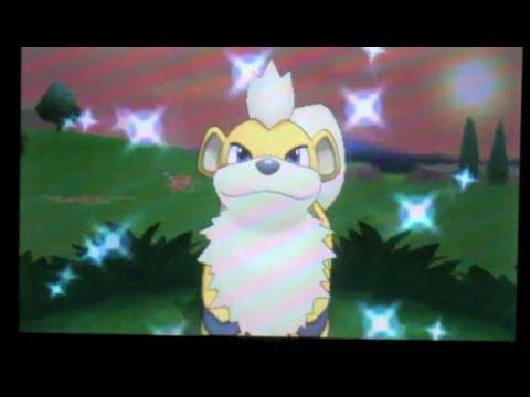 - LIVE SHINY Growlithe / Caninos on Pokemon X ! -