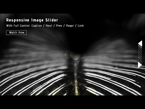 Responsive Image Slider With Full Control. Watch How to Create it from Scratch