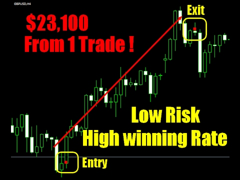 Forex Robots Makes 10000 a day on auto pilot Automated Forex Trading Software
