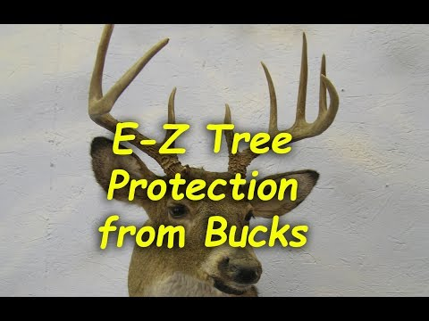 Cheap tree trunk protector from Deer Damage