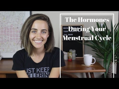 The Hormones During Your Menstrual Cycle
