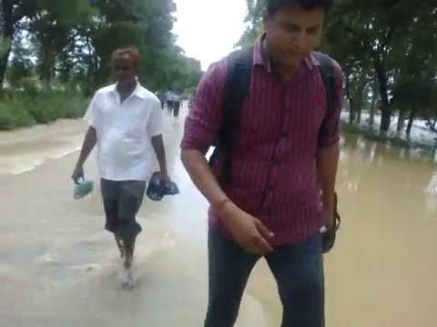 Flood in Dhampur -Hafizabad-Biharipur
