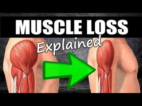 How Long Does It Take To LOSE Muscle After A Layoff?