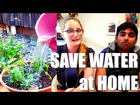 5 Small Ways We Save Water at Home