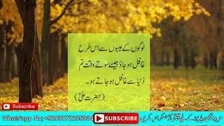 Rj Noor khan Videos - Veso club Online watch