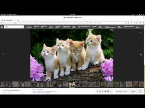 Gentoo Native :: FireFox ESR :: IPv6 :: 200Mbit