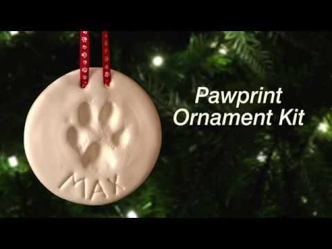 How to Make a Pawprint Ornament | DrsFosterSmith.com
