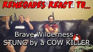 Download Renegades React to... Brave Wilderness - STUNG by a COW KILLER Video