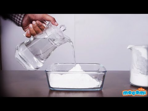 Cornstarch and Water Bonding - Cool Science Experiment | Mocomi Kids