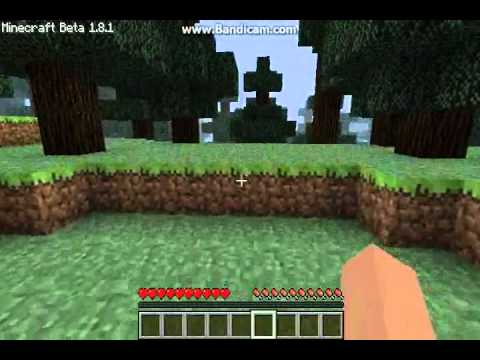 5 Ways To Get Banned in Minecraft